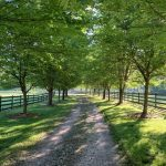 Barn-to-Home Renovation on a Picturesque Horse Farm in Secluded Tessentee near Franklin, NC - #16